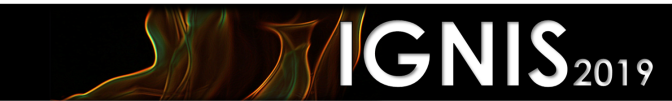ignis webinar logo; the words ignis 2019 on a black background with flames